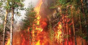 Из-за лесных пожаров Красноярск окутан дымом