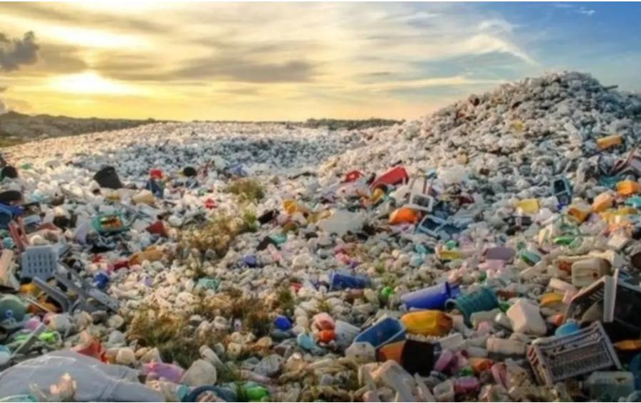 Экологи Greenpeace назвали Турцию свалкой европейских отходов